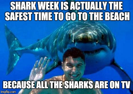 shark | SHARK WEEK IS ACTUALLY THE SAFEST TIME TO GO TO THE BEACH BECAUSE ALL THE SHARKS ARE ON TV | image tagged in shark | made w/ Imgflip meme maker