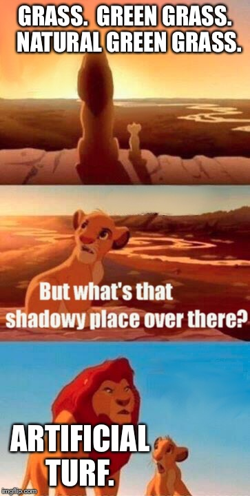 Simba Shadowy Place | GRASS.  GREEN GRASS.  NATURAL GREEN GRASS. ARTIFICIAL TURF. | image tagged in memes,simba shadowy place | made w/ Imgflip meme maker