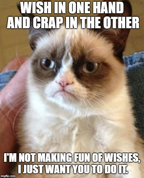 Grumpy Cat Meme | WISH IN ONE HAND AND CRAP IN THE OTHER I'M NOT MAKING FUN OF WISHES, I JUST WANT YOU TO DO IT. | image tagged in memes,grumpy cat | made w/ Imgflip meme maker