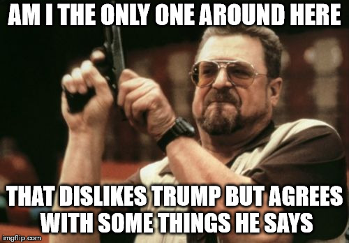 Am I The Only One Around Here Meme | AM I THE ONLY ONE AROUND HERE THAT DISLIKES TRUMP BUT AGREES WITH SOME THINGS HE SAYS | image tagged in memes,am i the only one around here | made w/ Imgflip meme maker