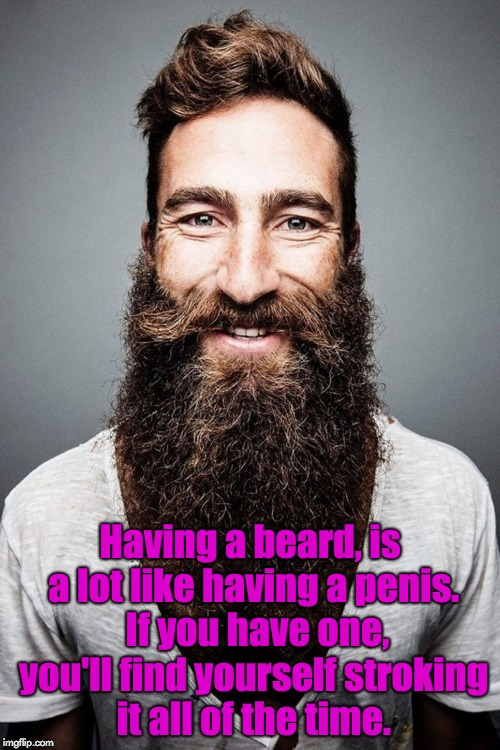 Beard ´n stuff | Having a beard, is a lot like having a p**is.  If you have one, you'll find yourself stroking it all of the time. | image tagged in beard n stuff | made w/ Imgflip meme maker