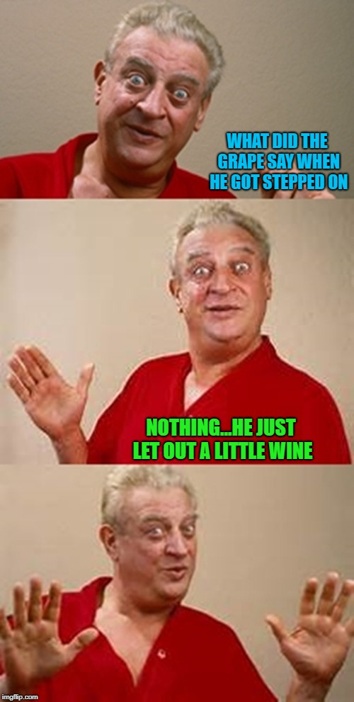 If you drink too much wine please don't drive......don't even putt! | WHAT DID THE GRAPE SAY WHEN HE GOT STEPPED ON NOTHING...HE JUST LET OUT A LITTLE WINE | image tagged in bad pun dangerfield,memes,making wine,funny,grapes,wine | made w/ Imgflip meme maker