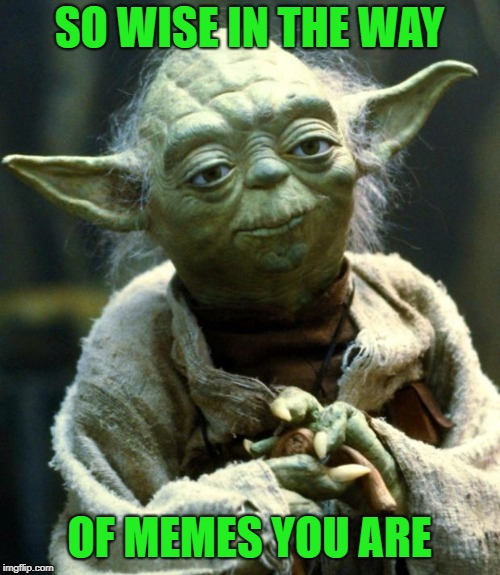 Star Wars Yoda Meme | SO WISE IN THE WAY OF MEMES YOU ARE | image tagged in memes,star wars yoda | made w/ Imgflip meme maker