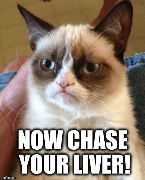 Grumpy Cat Meme | NOW CHASE YOUR LIVER! | image tagged in memes,grumpy cat | made w/ Imgflip meme maker