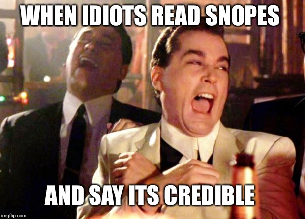 Goodfellas Laugh | WHEN IDIOTS READ SNOPES AND SAY ITS CREDIBLE | image tagged in goodfellas laugh | made w/ Imgflip meme maker