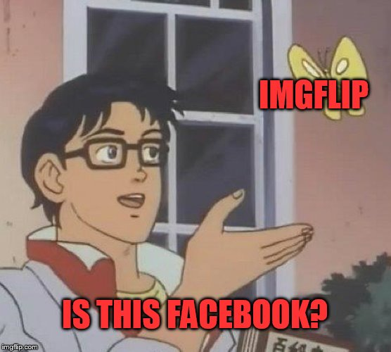 The new IMGFLIP | IMGFLIP IS THIS FACEBOOK? | image tagged in memes,is this a pigeon | made w/ Imgflip meme maker