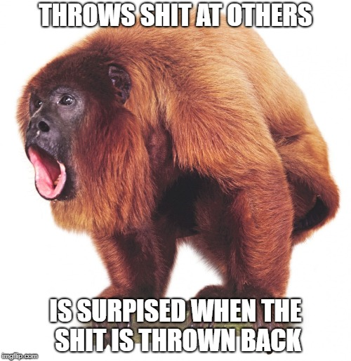 THROWS SHIT AT OTHERS IS SURPISED WHEN THE SHIT IS THROWN BACK | image tagged in howler monkey,shit throwing | made w/ Imgflip meme maker