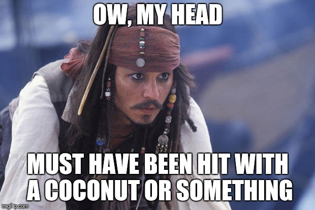 OW, MY HEAD MUST HAVE BEEN HIT WITH A COCONUT OR SOMETHING | made w/ Imgflip meme maker