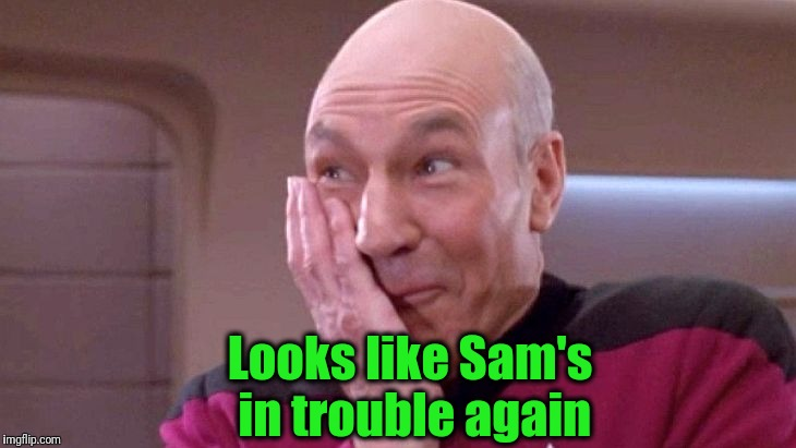 picard grin | Looks like Sam's in trouble again | image tagged in picard grin | made w/ Imgflip meme maker