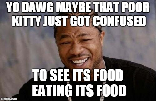 Yo Dawg Heard You Meme | YO DAWG MAYBE THAT POOR KITTY JUST GOT CONFUSED TO SEE ITS FOOD EATING ITS FOOD | image tagged in memes,yo dawg heard you | made w/ Imgflip meme maker