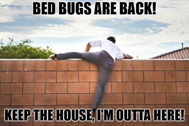Running Away from Bed Bugs | BED BUGS ARE BACK! KEEP THE HOUSE, I'M OUTTA HERE! | image tagged in run away,bed bugs,leaving,climbing,get outta here | made w/ Imgflip meme maker