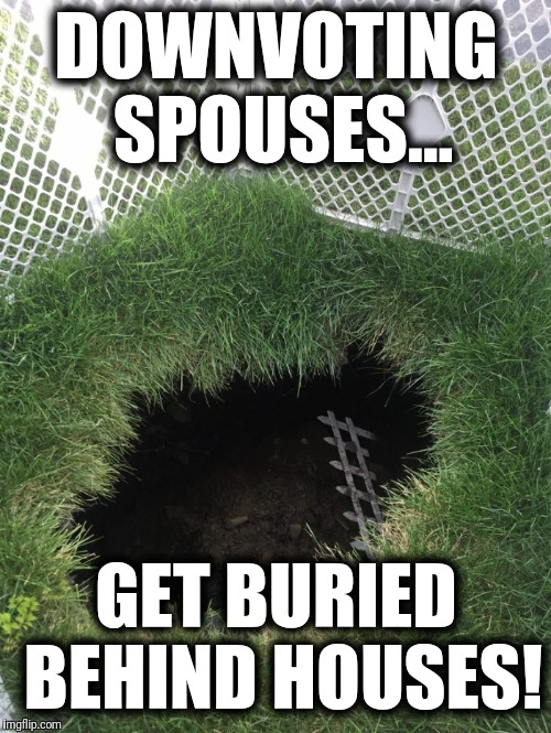DOWNVOTING SPOUSES... GET BURIED BEHIND HOUSES! | made w/ Imgflip meme maker