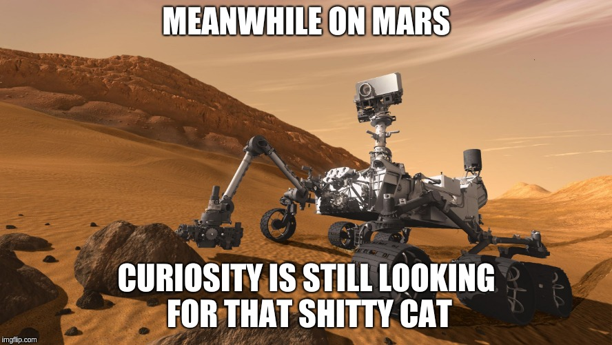 MEANWHILE ON MARS CURIOSITY IS STILL LOOKING FOR THAT SHITTY CAT | image tagged in curiosity rover | made w/ Imgflip meme maker