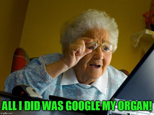 Grandma Finds The Internet Meme | ALL I DID WAS GOOGLE MY ORGAN! | image tagged in memes,grandma finds the internet | made w/ Imgflip meme maker
