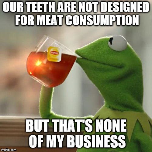 Meat eaters | OUR TEETH ARE NOT DESIGNED FOR MEAT CONSUMPTION BUT THAT'S NONE OF MY BUSINESS | image tagged in memes,but thats none of my business,kermit the frog | made w/ Imgflip meme maker