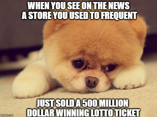 Sad Puppy | WHEN YOU SEE ON THE NEWS A STORE YOU USED TO FREQUENT JUST SOLD A 500 MILLION DOLLAR WINNING LOTTO TICKET | image tagged in memes | made w/ Imgflip meme maker