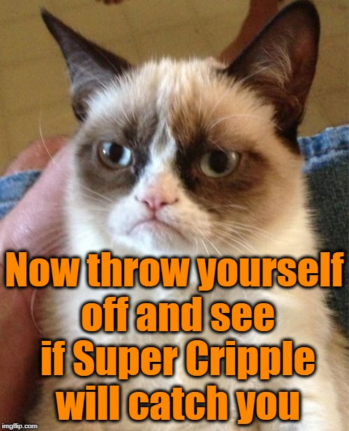 Grumpy Cat Meme | Now throw yourself off and see if Super Cripple will catch you | image tagged in memes,grumpy cat | made w/ Imgflip meme maker