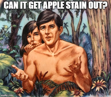 CAN IT GET APPLE STAIN OUT? | made w/ Imgflip meme maker