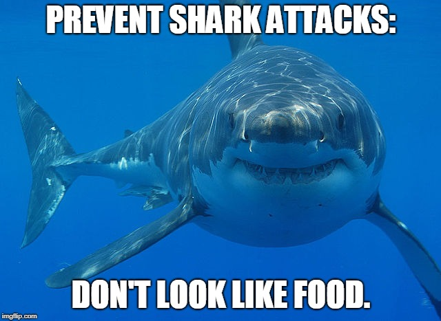 great white shark  | PREVENT SHARK ATTACKS: DON'T LOOK LIKE FOOD. | image tagged in great white shark | made w/ Imgflip meme maker