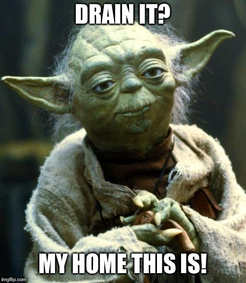 Star Wars Yoda Meme | DRAIN IT? MY HOME THIS IS! | image tagged in memes,star wars yoda | made w/ Imgflip meme maker