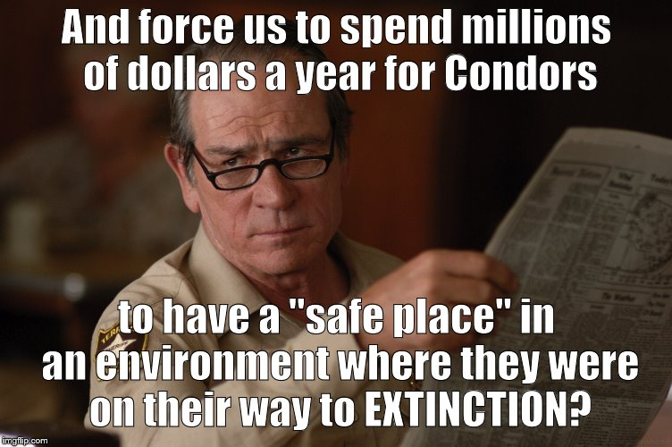 "say what? | And force us to spend millions of dollars a year for Condors to have a ""safe place"" in an environment where they were on their way to EXTINC 