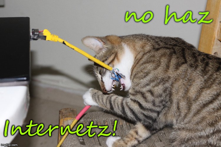 no haz Internetz! | image tagged in internet network hacking attack dsl maninthemiddle | made w/ Imgflip meme maker