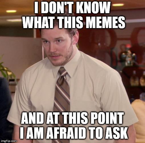 Afraid To Ask Andy Meme | I DON'T KNOW WHAT THIS MEMES AND AT THIS POINT I AM AFRAID TO ASK | image tagged in memes,afraid to ask andy | made w/ Imgflip meme maker