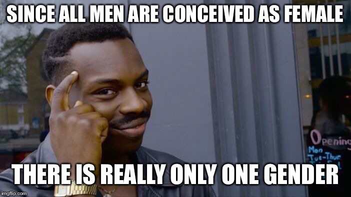 Roll Safe Think About It Meme | SINCE ALL MEN ARE CONCEIVED AS FEMALE THERE IS REALLY ONLY ONE GENDER | image tagged in memes,roll safe think about it | made w/ Imgflip meme maker