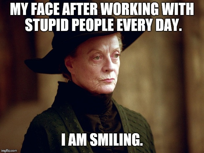 MY FACE AFTER WORKING WITH STUPID PEOPLE EVERY DAY. I AM SMILING. | image tagged in unamused mcgonagall | made w/ Imgflip meme maker