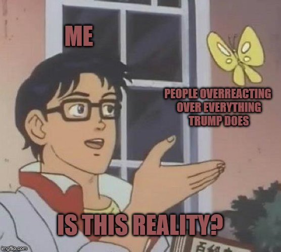 Unfortunately, This IS Reality... | ME PEOPLE OVERREACTING OVER EVERYTHING TRUMP DOES IS THIS REALITY? | image tagged in memes,is this a pigeon | made w/ Imgflip meme maker