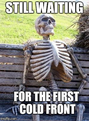 Waiting Skeleton Meme | STILL WAITING FOR THE FIRST COLD FRONT | image tagged in memes,waiting skeleton | made w/ Imgflip meme maker