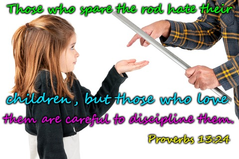 Proverbs 13:24  Spare The Rod, Spoil The Child  | Those who spare the rod hate their Proverbs 13:24 them are careful to discipline them. children, but those who love | image tagged in bible,bible verse,holy bible,holy spirit,verse,lord | made w/ Imgflip meme maker