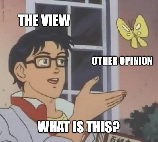 Is This A Pigeon Meme | THE VIEW OTHER OPINION WHAT IS THIS? | image tagged in memes,is this a pigeon | made w/ Imgflip meme maker