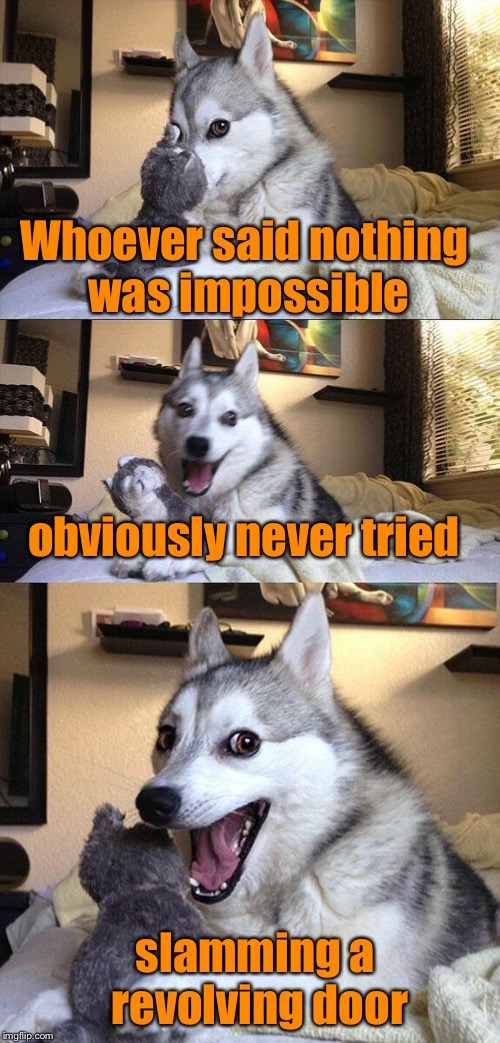 Bad Pun Dog Meme | Whoever said nothing was impossible obviously never tried slamming a revolving door | image tagged in memes,bad pun dog,humor | made w/ Imgflip meme maker