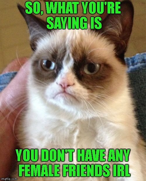 Grumpy Cat Meme | SO, WHAT YOU'RE SAYING IS YOU DON'T HAVE ANY FEMALE FRIENDS IRL | image tagged in memes,grumpy cat | made w/ Imgflip meme maker