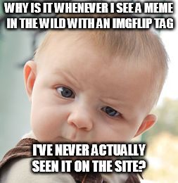Happened at least 2-3 times, and they seemed like current memes... | WHY IS IT WHENEVER I SEE A MEME IN THE WILD WITH AN IMGFLIP TAG I'VE NEVER ACTUALLY SEEN IT ON THE SITE? | image tagged in memes,skeptical baby | made w/ Imgflip meme maker