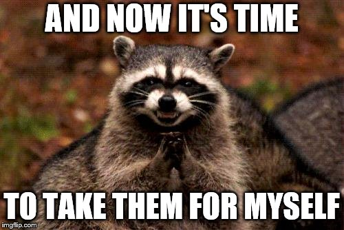 Evil Plotting Raccoon Meme | AND NOW IT'S TIME TO TAKE THEM FOR MYSELF | image tagged in memes,evil plotting raccoon | made w/ Imgflip meme maker