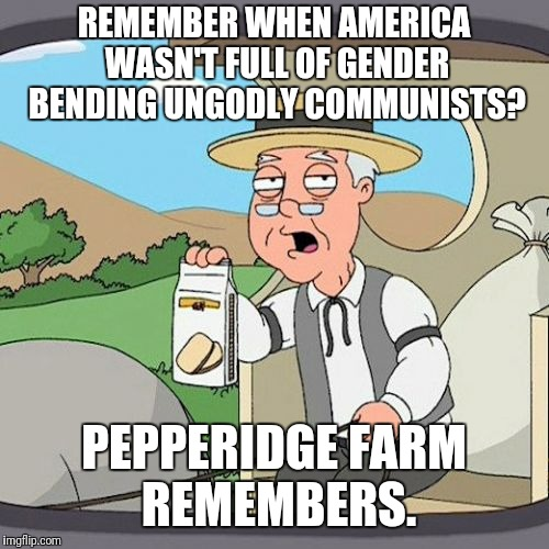 Pepperidge Farm Remembers | REMEMBER WHEN AMERICA WASN'T FULL OF GENDER BENDING UNGODLY COMMUNISTS? PEPPERIDGE FARM REMEMBERS. | image tagged in memes,pepperidge farm remembers | made w/ Imgflip meme maker