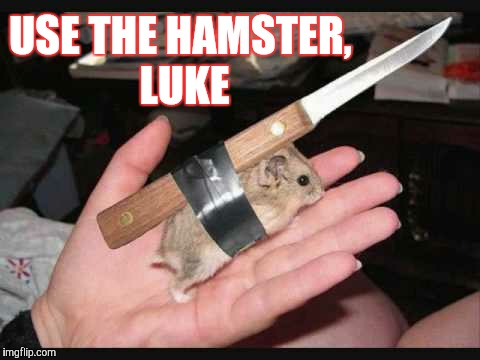 Lock and Load Hamster | USE THE HAMSTER, LUKE | image tagged in lock and load hamster | made w/ Imgflip meme maker