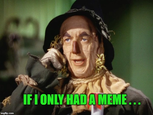 Third Submission | IF I ONLY HAD A MEME . . . | image tagged in third submission,wizard of oz,scarecrow,expanding brain,what do we want,what year is it | made w/ Imgflip meme maker