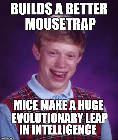 Bad Luck Brian Meme | BUILDS A BETTER MOUSETRAP IN INTELLIGENCE MICE MAKE A HUGE EVOLUTIONARY LEAP | image tagged in memes,bad luck brian | made w/ Imgflip meme maker