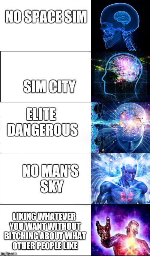 NO SPACE SIM SIM CITY ELITE DANGEROUS NO MAN'S SKY LIKING WHATEVER YOU WANT WITHOUT B**CHING ABOUT WHAT OTHER PEOPLE LIKE | image tagged in brain evolution | made w/ Imgflip meme maker