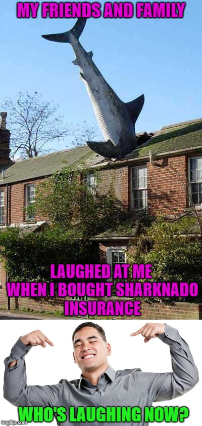 It's Shark Week on Discovery channel!!! | MY FRIENDS AND FAMILY LAUGHED AT ME WHEN I BOUGHT SHARKNADO INSURANCE WHO'S LAUGHING NOW? | image tagged in shark week,memes,sharknado insurance,funny,sharknado,discovery | made w/ Imgflip meme maker