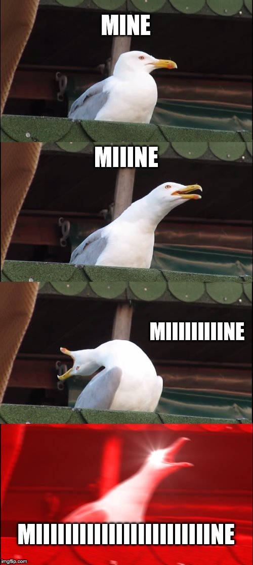 Seagull going mine (with more tags yay) | MINE MIIINE MIIIIIIIIINE MIIIIIIIIIIIIIIIIIIIIIIIINE | image tagged in memes,inhaling seagull,mine,birds,funny,finding nemo | made w/ Imgflip meme maker