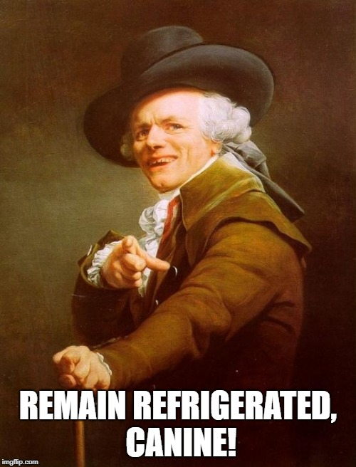As the hip kids say | REMAIN REFRIGERATED, CANINE! | image tagged in memes,joseph ducreux | made w/ Imgflip meme maker