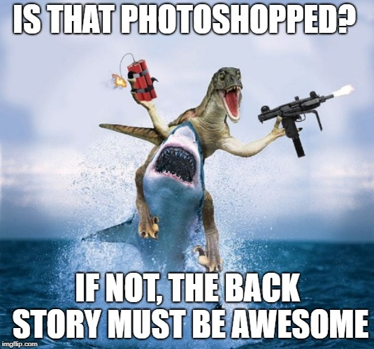 IS THAT PHOTOSHOPPED? IF NOT, THE BACK STORY MUST BE AWESOME | made w/ Imgflip meme maker