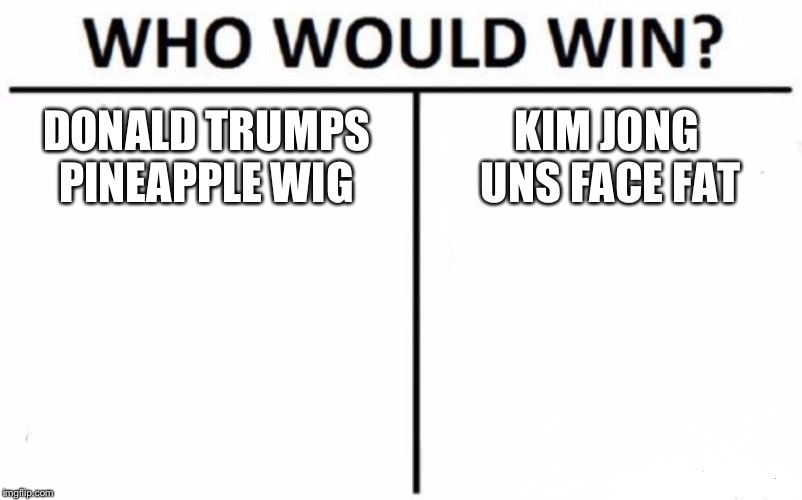 Who Would Win? Meme | DONALD TRUMPS PINEAPPLE WIG KIM JONG UNS FACE FAT | image tagged in memes,who would win | made w/ Imgflip meme maker
