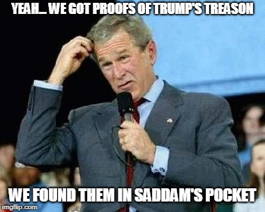 Confused Bush | YEAH... WE GOT PROOFS OF TRUMP'S TREASON WE FOUND THEM IN SADDAM'S POCKET | image tagged in confused bush | made w/ Imgflip meme maker