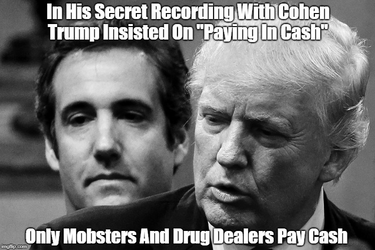"In His Secret Recording With Cohen Trump Insisted On ""Paying In Cash"" Only Mobsters And Drug Dealers Pay Cash 