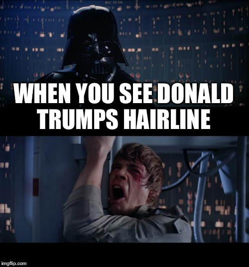Star Wars No Meme | WHEN YOU SEE DONALD TRUMPS HAIRLINE | image tagged in memes,star wars no | made w/ Imgflip meme maker